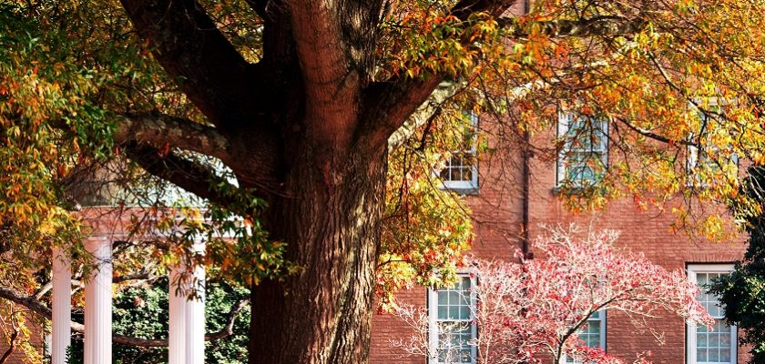 Views of fall color at the University of North Carolina at Chapel Hill.